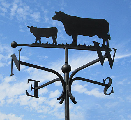 weathervane cow and calf, vane for farm, aberdeen angus weathervane